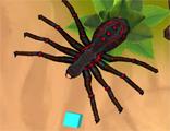거미의 모험