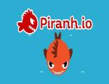 [��Ƽ] �Ƕ��Ű��� �Ƕ�Ͽ�(piranh.io)